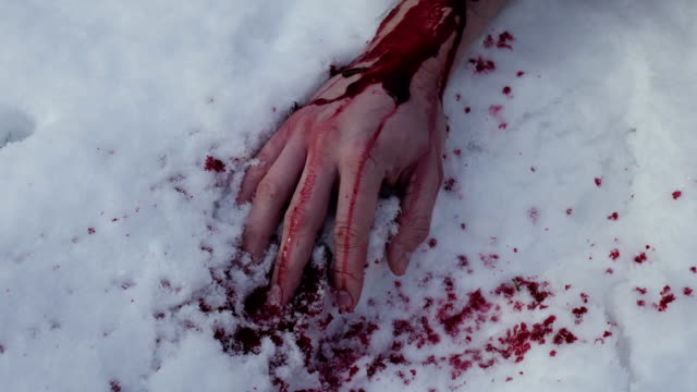 hand covered in blood on snow. - убийство стоковые видео и кадры b-roll