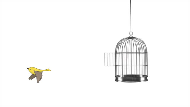 hand drawn animation - little bird flying out of a birdcage