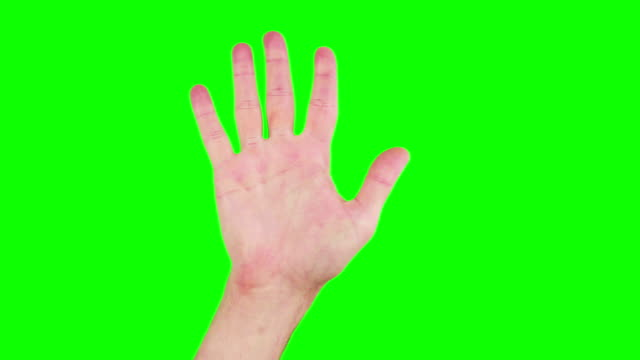 hand facing palm down - palm of hand stock videos & royalty-free footage