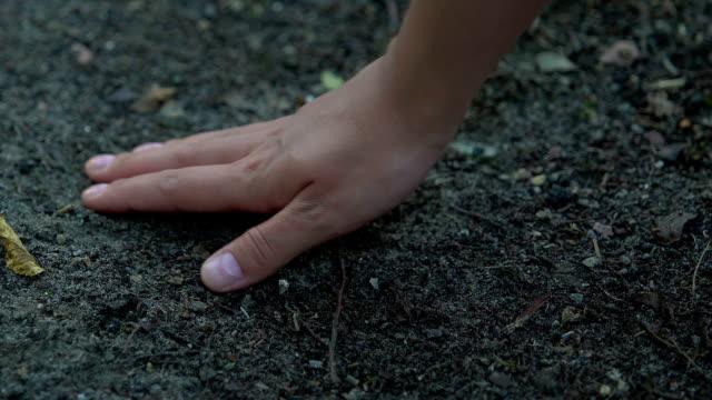 sporco macinato a mano nei boschi, esaurimento e inquinamento del suolo, ecologia - geografia fisica video stock e b–roll