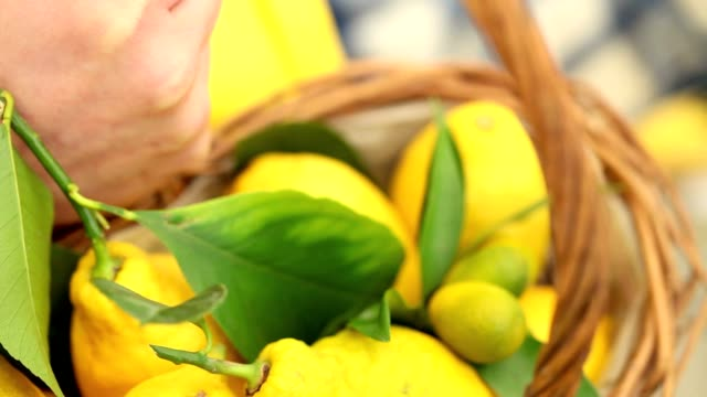 hand harvest a lemon and put it in the basket wicker video