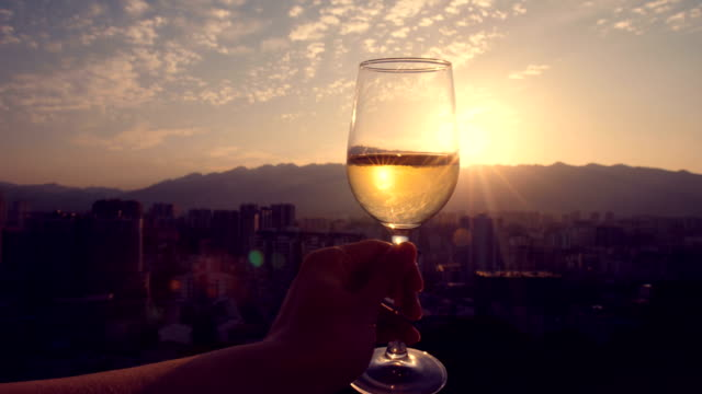 Hand holding champagne at sunset Hand holding champagne at sunset winetasting stock videos & royalty-free footage