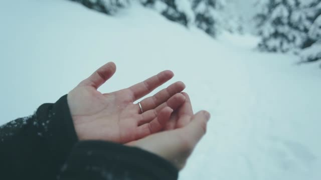 hand of a girl catches snowflakes. - palm of hand stock videos & royalty-free footage