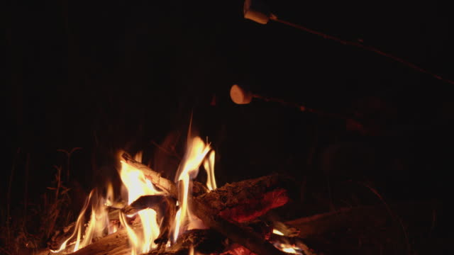Hand of  asian family marshmallow on a stick roasted over camping fire at night. The concept of family lifestyle on holiday Hand of  asian family marshmallow on a stick roasted over camping fire at night. The concept of family lifestyle on holiday marshmallow stock videos & royalty-free footage