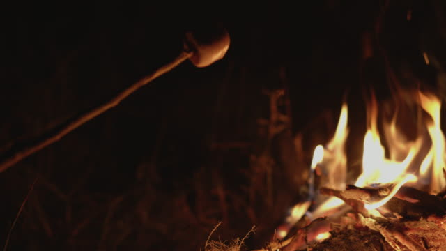 hand of  asian family marshmallow on a stick roasted over camping fire at night. the concept of family lifestyle on holiday - prażony filmów i materiałów b-roll
