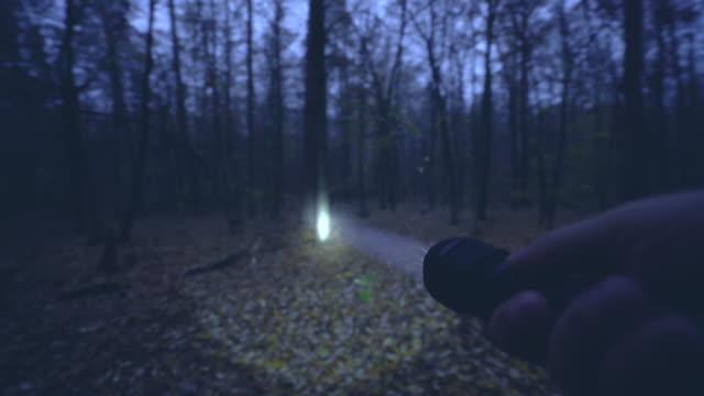 vídeos de stock e filmes b-roll de hand of hunter holding flashlight, looking for animals in night forest, hobby - lanterna elétrica