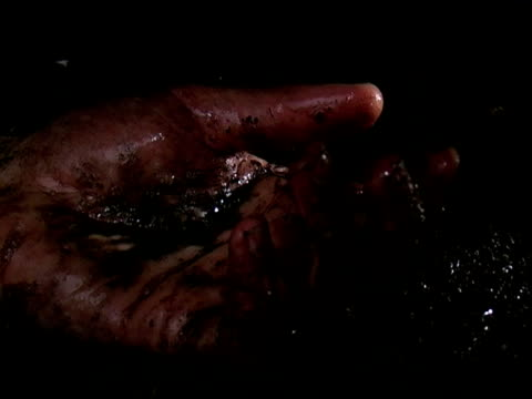 Hand of the Fallen video