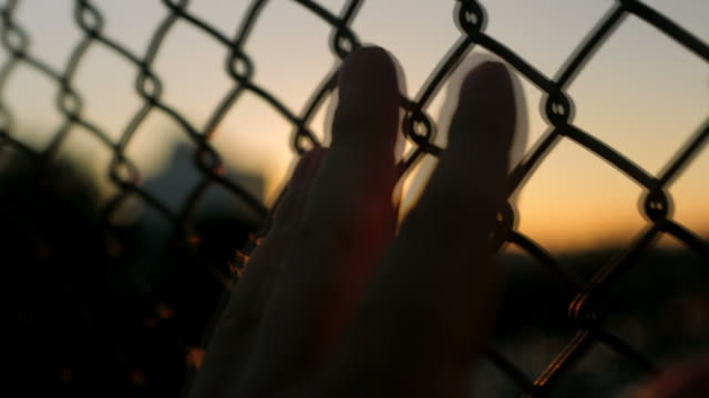 Hand on a fence at sunset video