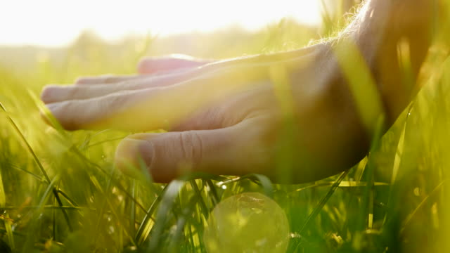 hand on grass with sun in nature. positive mood - трогать стоковые видео и кадры b-roll