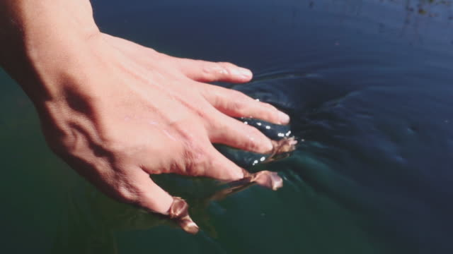Hand playing with clear fresh water video