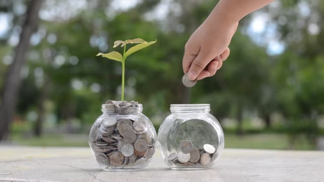 hand Put money Bottle Banknotes tree Image of bank note with plant growing on top for business green natural background money saving and investment financial concept hand Put money Bottle Banknotes tree Image of bank note with plant growing on top for business green natural background money saving and investment financial concept jar stock videos & royalty-free footage