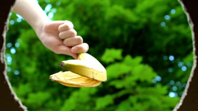 路上でバナナの皮をゴミ箱に入れる手、社会的責任の概念 - 分離点の映像素材/bロール