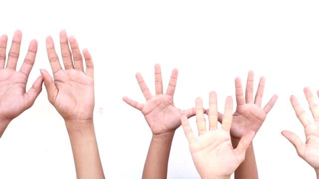 hand raised on white background - avvicinarsi video stock e b–roll