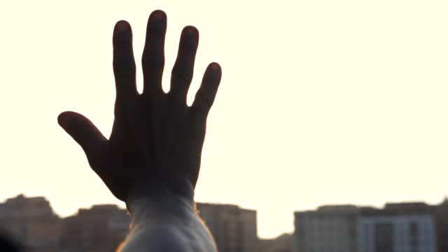 hand raising up to the sun - avvicinarsi video stock e b–roll