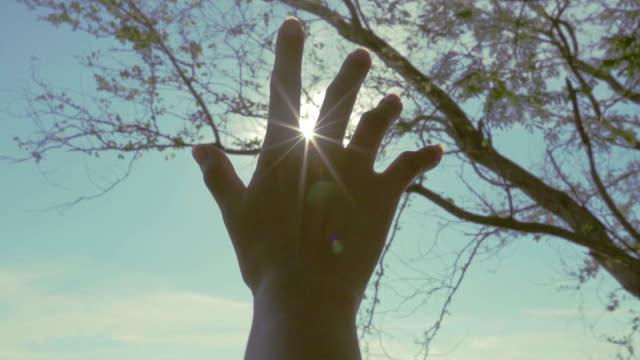 hand reach to the sun video