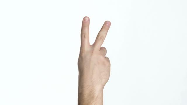 hand, die Handfläche Rücken V - – Video