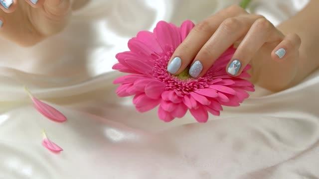 Hand tearing off gerbera petals, slow motion. video