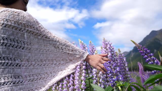 Hand touching purple lupine flowers video