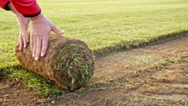 slo mo ds hand rulla stycketorv på ett fält - gräsmatta odlad mark bildbanksvideor och videomaterial från bakom kulisserna