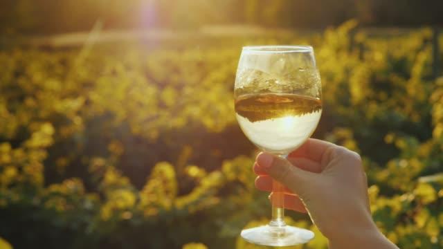 eine hand mit einem glas weißwein schüttelt leicht. vor dem hintergrund des weinguts in der sonne. weinprobe. slow-motion-video - weinglas stock-videos und b-roll-filmmaterial
