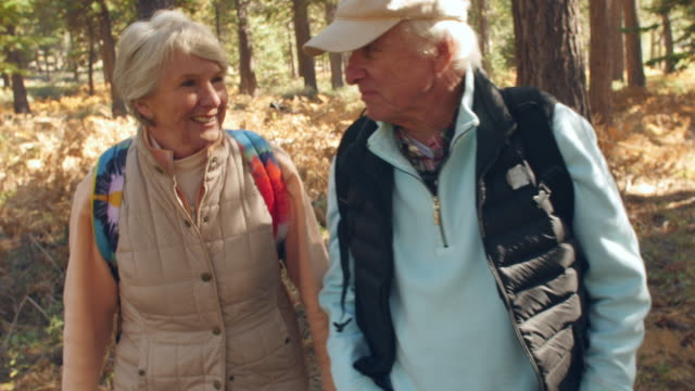 Handheld front view of senior couple walking in a forest video