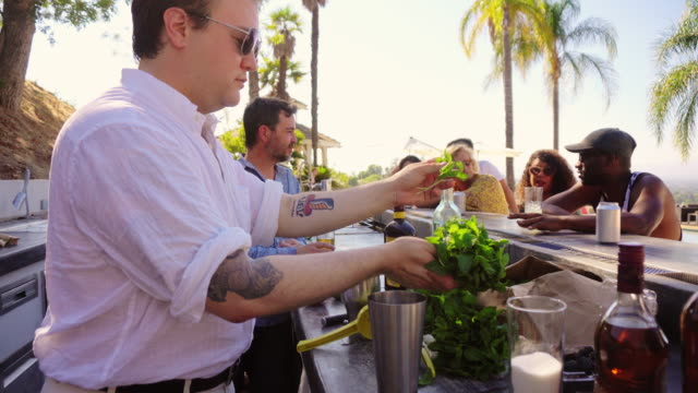 Handheld Shot of Man Making Drinks at Pool Party video