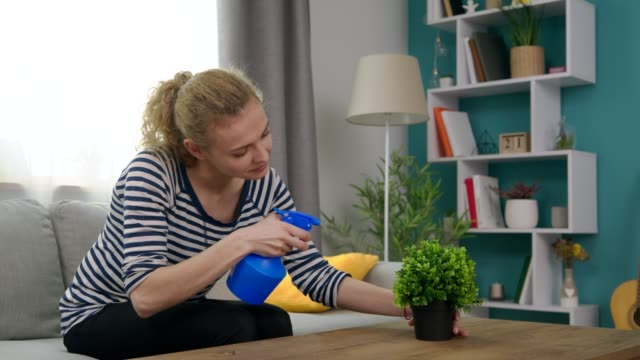 Handheld shot of young woman sprays a flower in her cozy living room video