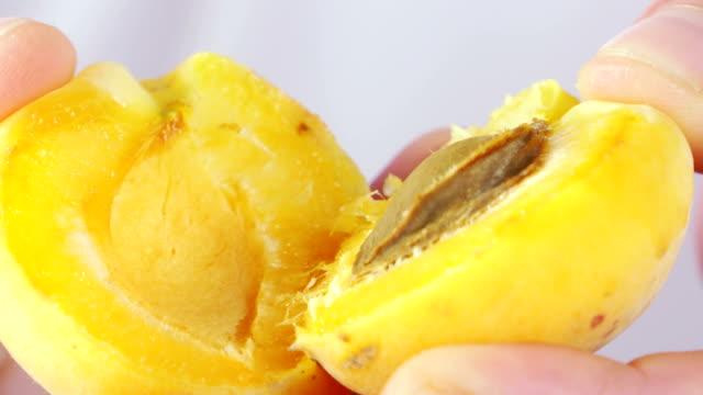 vídeos de stock e filmes b-roll de hands holding two halves of juicy apricot close-up - damasco fruta