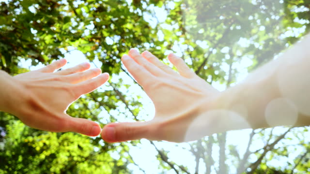 hands in front of trees with sunshine. - giuntura umana video stock e b–roll