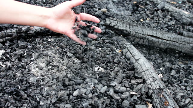 Hands of a girl taking scorched ash from the fire, which carries the wind video