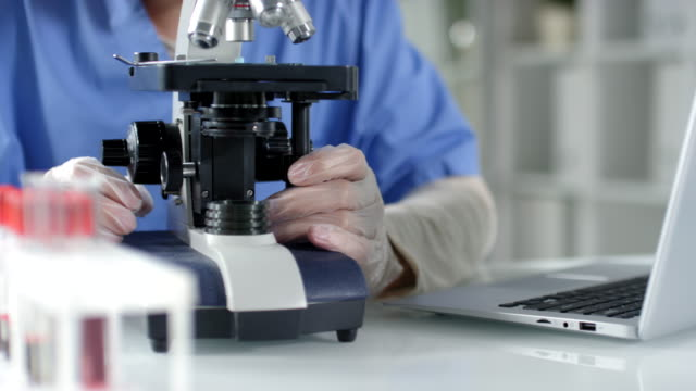 Hands of Scientist Using Microscope and Typing on Laptop