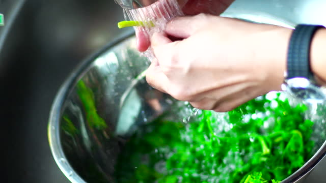Hands of woman washing cilantro at a kitchen sink. Hands of woman washing cilantro at a kitchen sink. kitchen sink stock videos & royalty-free footage