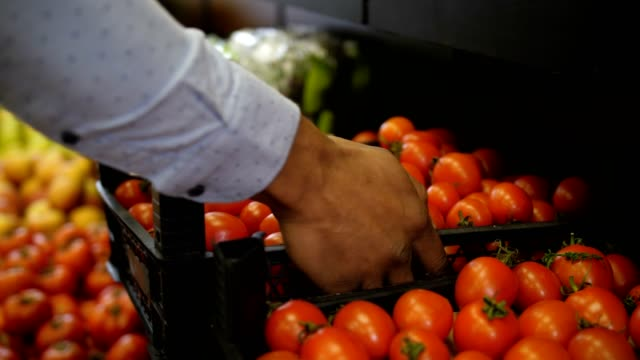 Hands placing box with ripe tomatoes at store