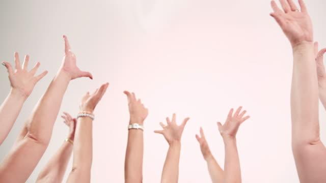 hands raised on white background - avvicinarsi video stock e b–roll