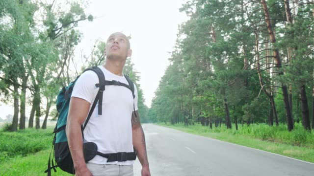 vídeos de stock e filmes b-roll de handsome african man hitchiking on countryside road with backpack - man admires forest