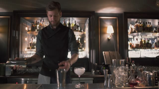 Handsome bartender mixologist putting cubes of ices in shaker video