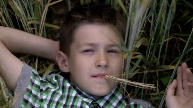 Handsome boy lying on the field looking at the camera and dreaming. Young boy enjoying nature outdoors video