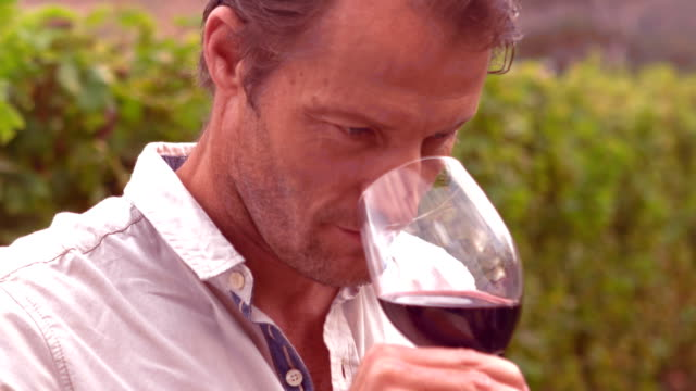 Handsome man tasting wine video
