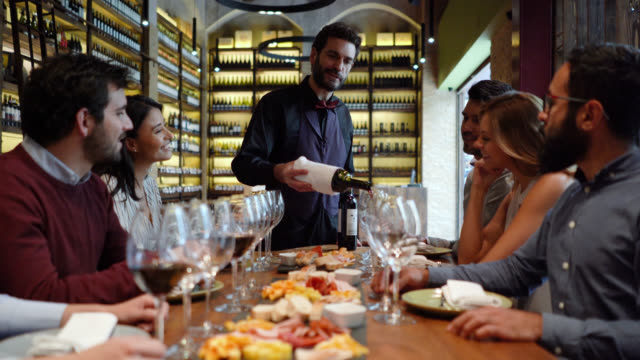 Handsome sommelier explaining wine properties while serving to a group of people at a cellar during a wine tasting Handsome sommelier explaining wine properties while serving to a group of people at a cellar during a wine tasting all looking very happy winetasting stock videos & royalty-free footage
