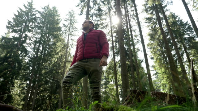 vídeos de stock e filmes b-roll de handsome young man hiking alone enjoying the beautiful view in a forest - man admires forest