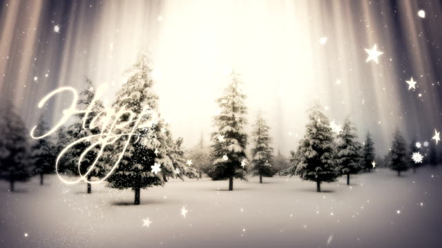 Handwritten Happy Holidays | Winter Landscape http://i.imgur.com/IWBKq.jpg holiday stock videos & royalty-free footage
