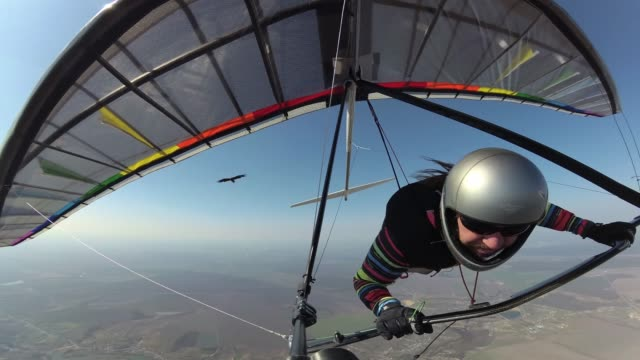 Hang glider pilot on colorful wing flies together with white tailed eagle.