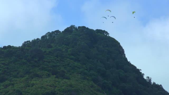 Hang Gliders - Mount Maunganui, New Zealand
