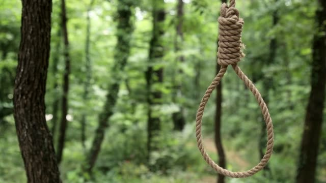 Hang Rope on the Branch Hang rope on the branch of tree in forest. hanging stock videos & royalty-free footage