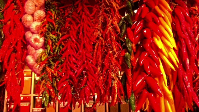 hanging colorful chili peppers and garlic - paprica video stock e b–roll