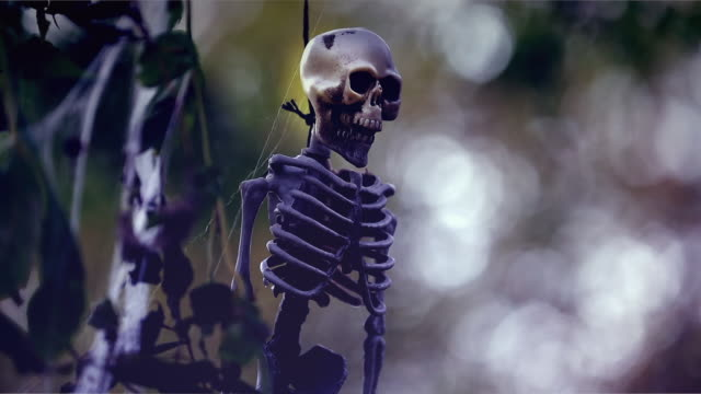 vídeos de stock, filmes e b-roll de hanging esqueleto - decoração