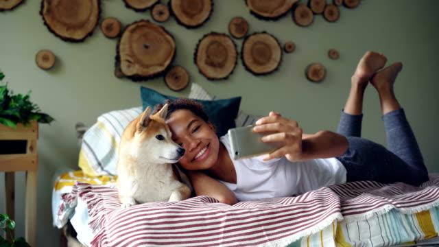 stockvideo's en b-roll-footage met gelukkig african american girl trots hondenbezitter neemt selfie met schattig huisdier liggend op bed in modern appartement met behulp van de smartphone. technologie en sociale media concept. - teenager animal