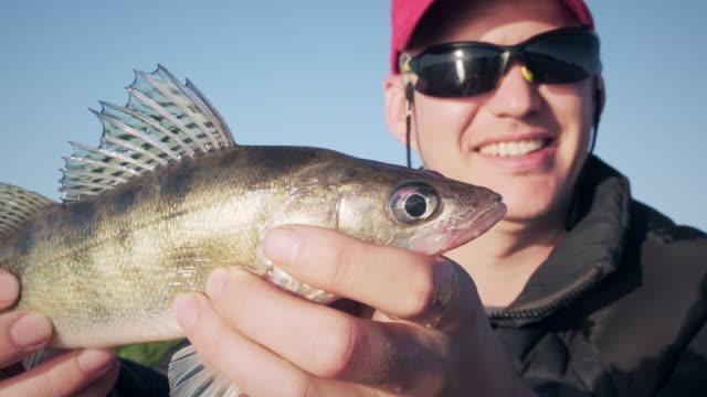 glücklicher angler mit winzigen zanderfischen - fang stock-videos und b-roll-filmmaterial