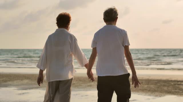 幸せなアジアの老夫婦は救いの手と砂浜の夕日の海のサーフィンに歩きます。 - シルバー点の映像素材/bロール