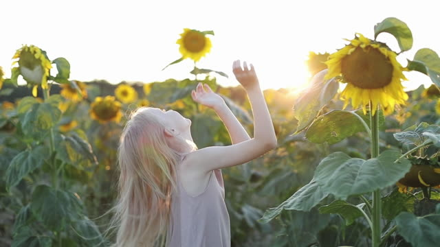 Happy blonde girl sunbathing in a field with yellow sunflowers.